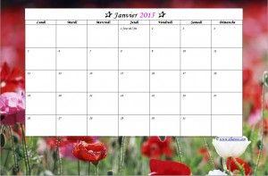 Jan15. calendrier 2015 à imprimer gratuit