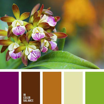 бледно-зеленый, оттенки коричневого, оттенки салатового, пурпурный, салатовый, светло-коричневый, фиолетовый, цвет зелени, шоколадный.
