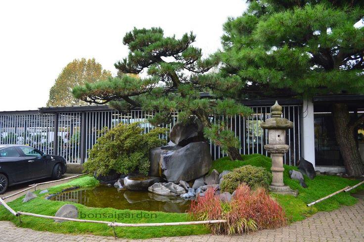 japonské záhrady, bonsaje, bonsaigarden: záhrady