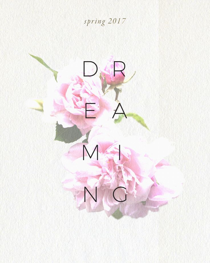 Spring Dreaming Graphic by Libby Bryant