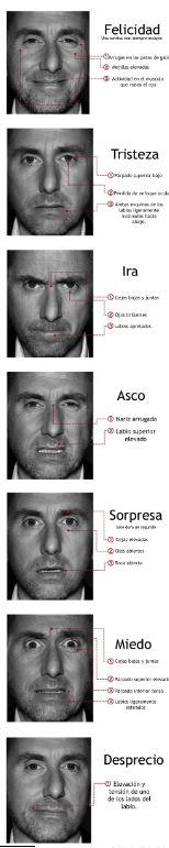 Emociones y expresiones faciales universales
