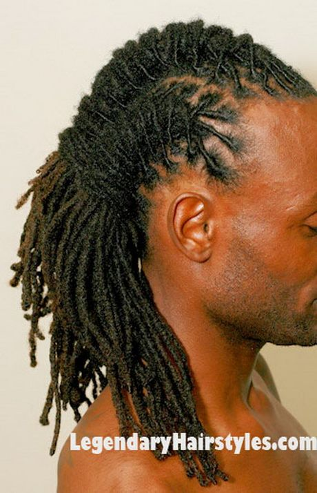 Dreadlocks Hairstyles both on the red carpet and in the board room dreadlocks are making a comeback that is because there are so many great black dreadlocks styles from which Braided Dreads Hairstyles