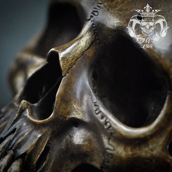 Hand Carved Human Skull Jawless Realistic from Wood  With Antique FinishFind this Skull on Etsy