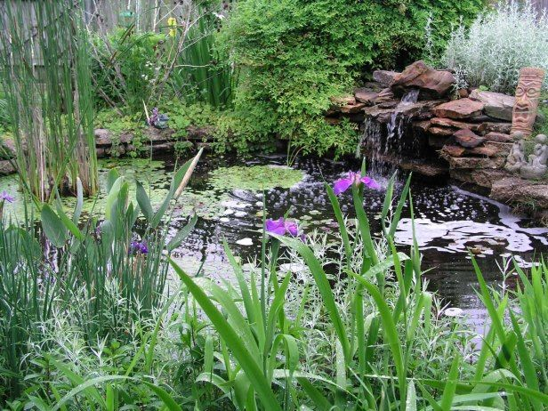 How To Prepare Your Pond For Winter It 39 S Not Too Early