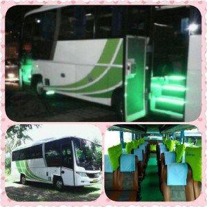 Bus Pariwisata Jogja Seat 31