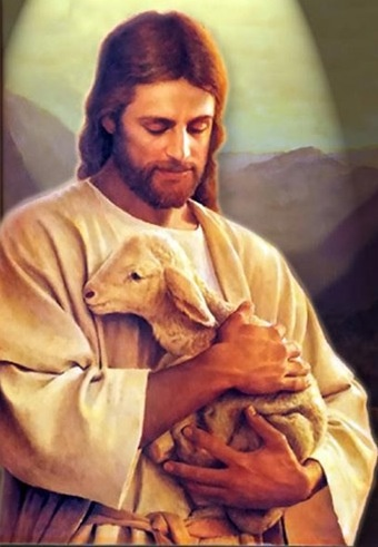 jesus and the little lamb