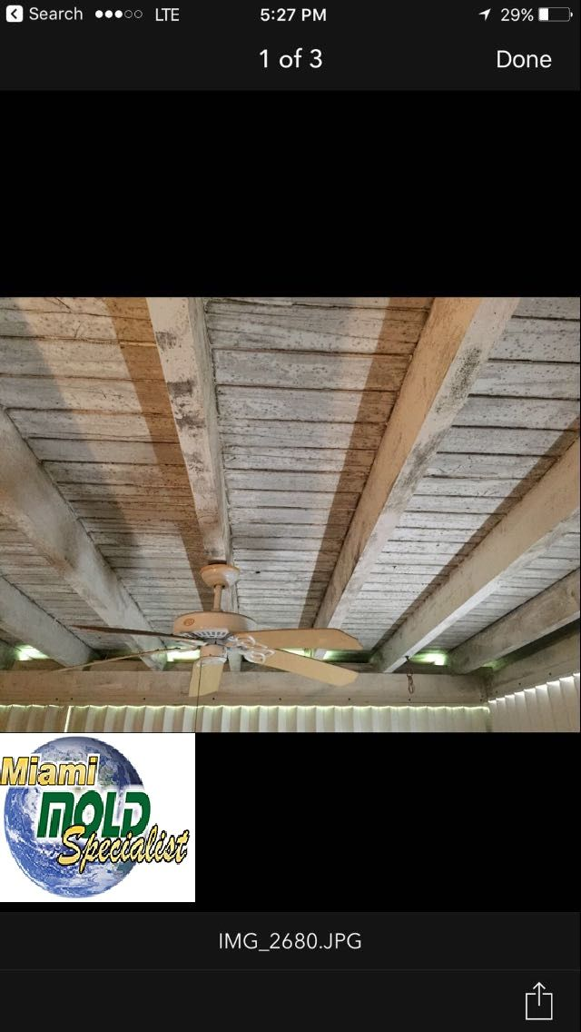 Miami Mold Specialist provides mold inspection, remediation, removal services in Miami, Fort Lauderdale and surrounding areas.