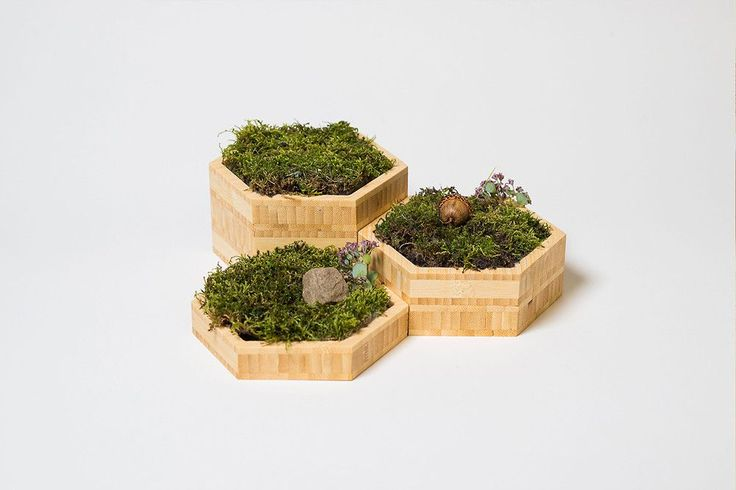 modify furniture set of three small modern tabletop planters