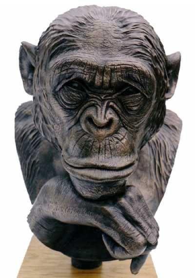 Bronze African Animal Amp Wildlife Sculpture By Sculptor