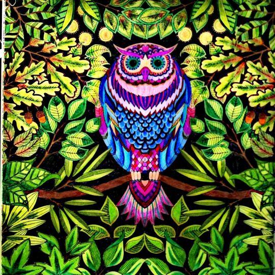 283 Best ColoringFun Images On Pinterest