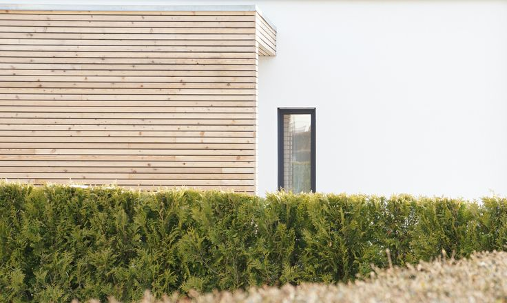 Neubau _ #Holz _ #Putz _ #Fassade #eleVAtion.architecture+design