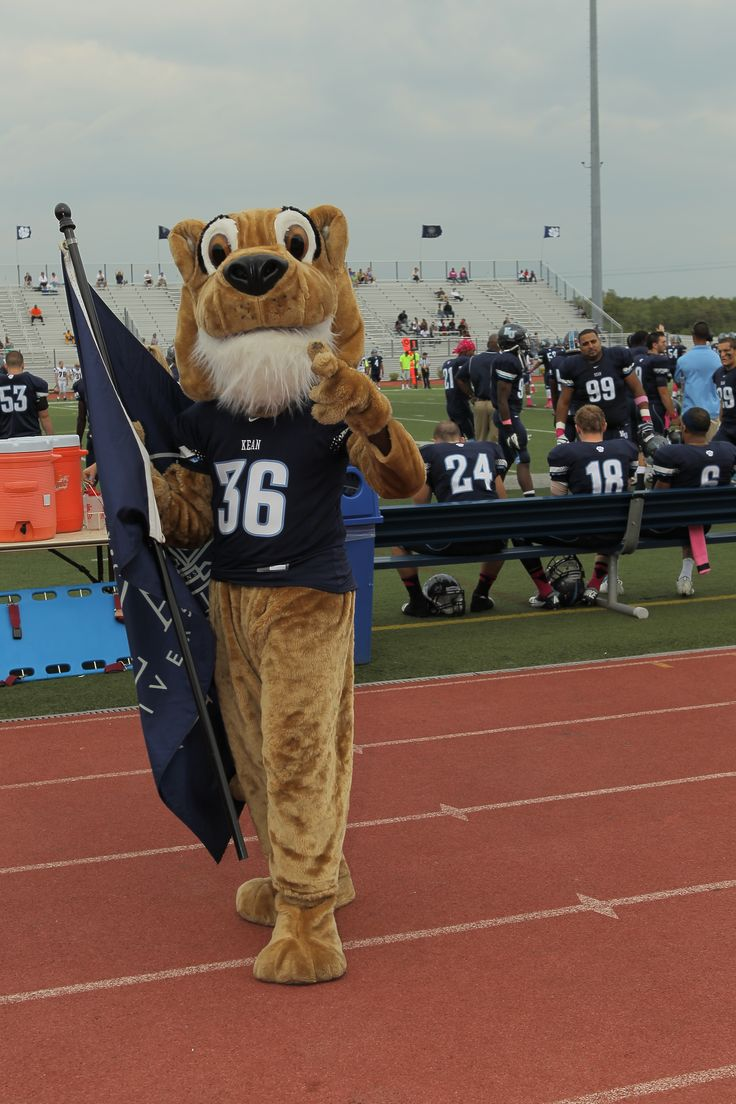 Cougar Mascot Kean History Of Homecomings Pinterest