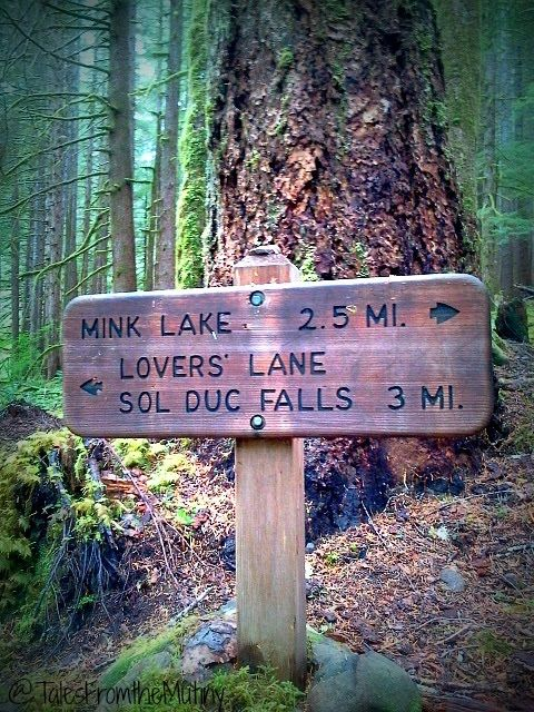 Tales From the Mutiny: Hiking Lovers Lane and Soaking in the Hot Springs-Sol Duc Olympic National Park