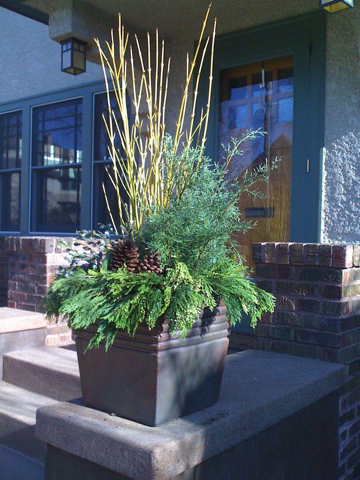 Yellow Twig Dogwood, Winter Planter, Pinecones, Garden Design, www.sarahscottagecreations.com
