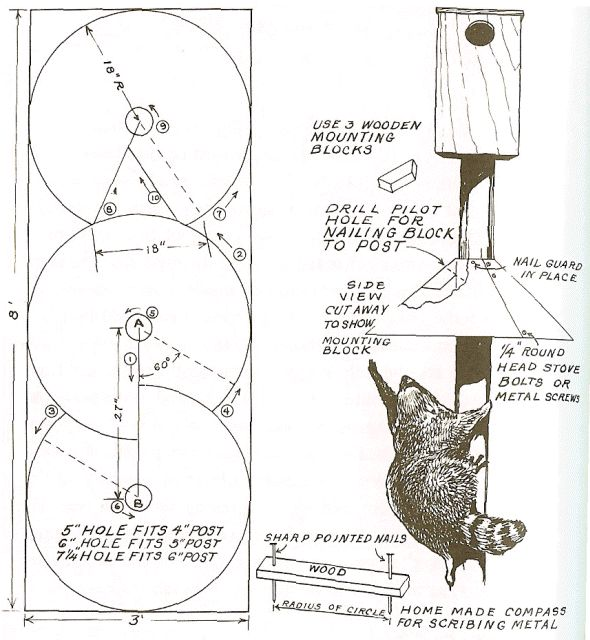 dyi Squirrel Baffle Conical baffle instructions.