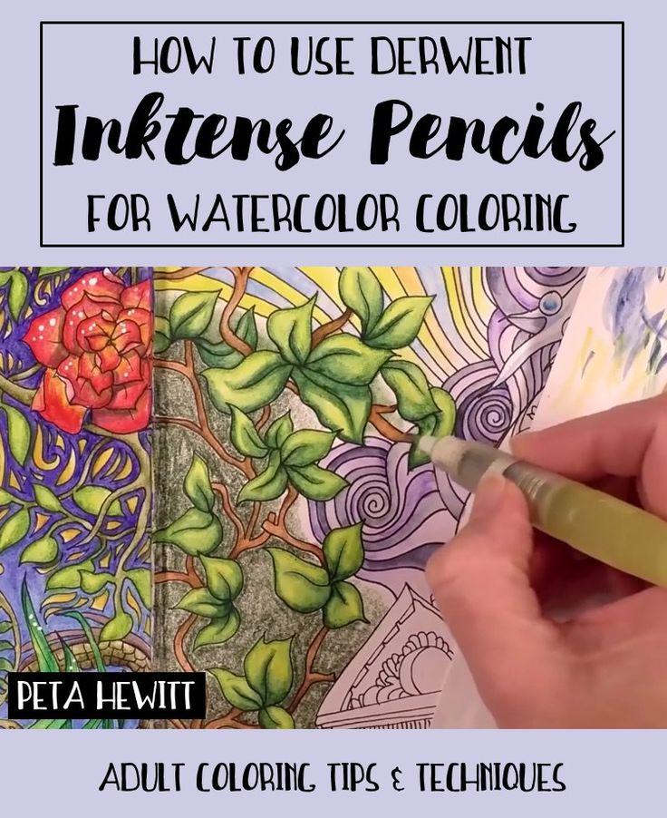 Best 25+ Watercolor pencils techniques ideas on Pinterest ...
