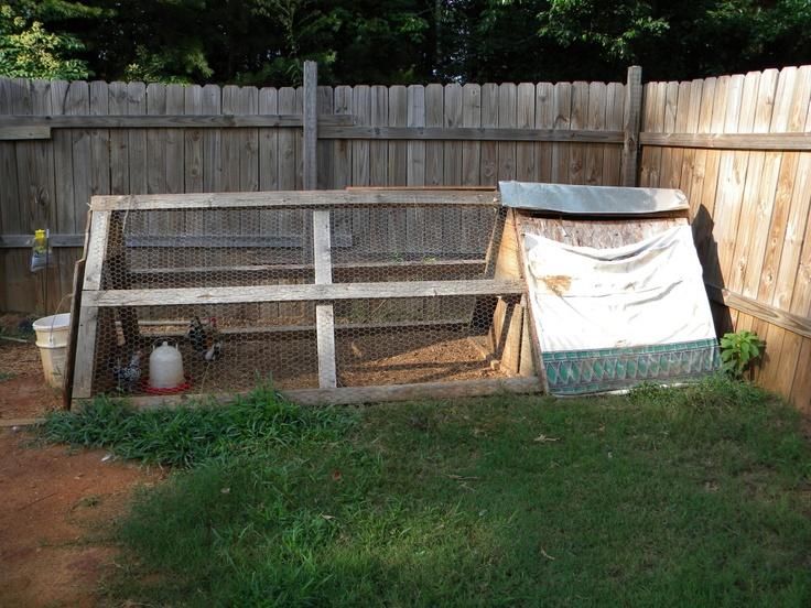 Backyard Farming Animals : SmallMedium Chicken Coop  $80  The Atlanta Backyard Poultry Meetup