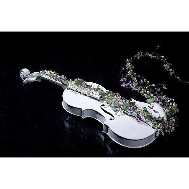 White decorative #violin and flower composition #Pictures #Music http://kozzi.tv/10qD7L - Dollar Stock Images -