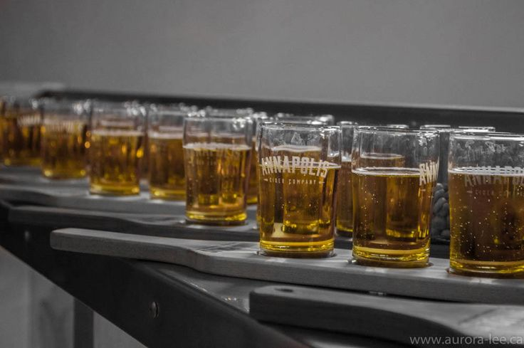 https://flic.kr/p/NPoSZL | Gold | A tour and tasting at Annapolis Cider Company, organized by Kings Co. Photography Club.
