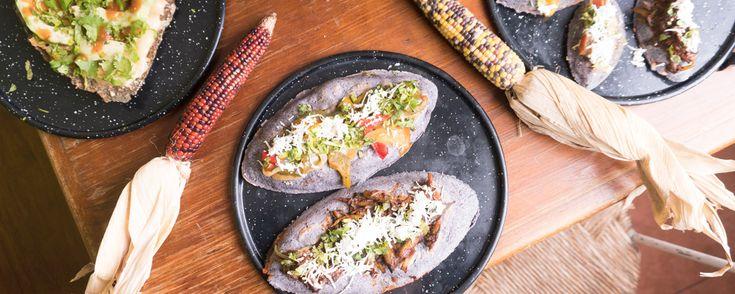 Tlaco, ubicado en la colonia Condesa, es un restaurante donde podrás probar uno de los platillos favoritos de la cocina mexicana tradicional.