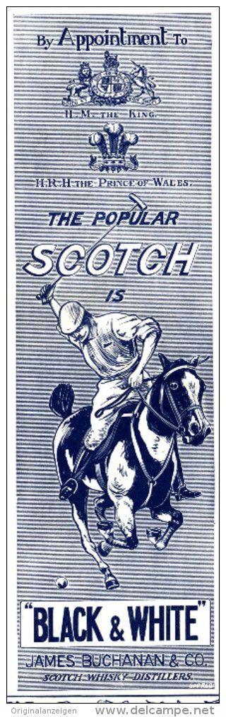 Original - Anzeige / Advertise 1903 : (ENGLISH) BUCHANAN BLACK AND WHITE SCOTCH WHISKY / POLO -  55 x 175 mm