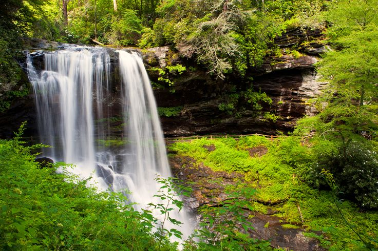 There are so many waterfalls in NC, it's hard to know where to start. We thought we'd help.