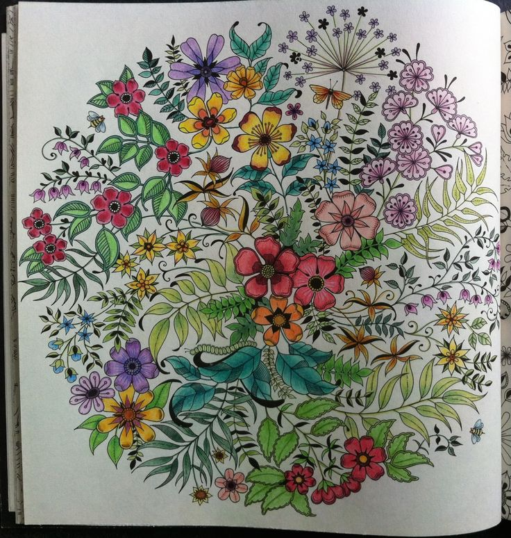 26 Best Jardins Secrets Images On Pinterest