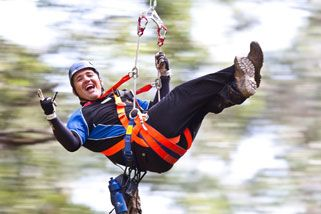 Zip Lining Adventure in the Treetops, Otways Rainforest, Great Ocean Road VIC | RedBalloon
