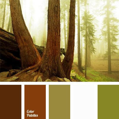 Sunrise in the summer forest, already awakened for a new day but still emanating coolness of the night. This palette includes shades of brown, illuminated by brightness of white color and refreshed with shades of olive. Appropriate combination of colors for women's autumn clothes. Ideal for creating a landscape design of a country house.