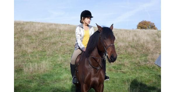 Free Rein TV Review