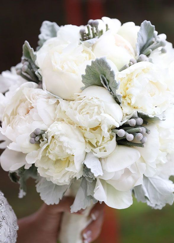 Peonies are mixed with soft gray lamb's ear for a wonderfully wintry feel.