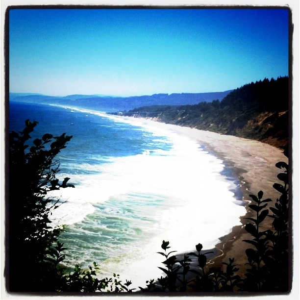 19 best beaches in northern california images on pinterest for Best beach in northern california