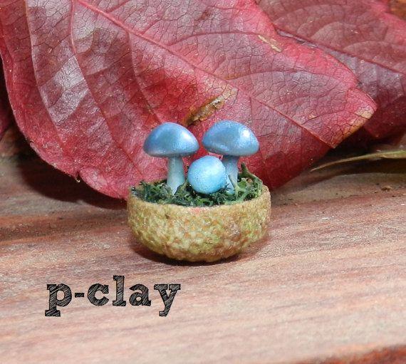 Bowl (shell acorn) with 3 Mushrooms Fantasy Blue made in polymer clay (1:12) by pclayplay. Cuenco (cáscara de bellota) con 3 setas Azul Fantasía realizadas en arcilla poliméricas (1:12) por Pclayplay.