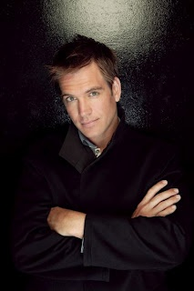 Michael Weatherly. Very special agent Anthony Dinozzo.