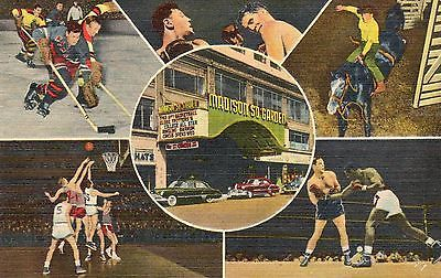 #Boxing,hockey,basketball,rodeo,madison #square #garden-new york city,ny 1951,  View more on the LINK: http://www.zeppy.io/product/gb/2/290824606409/