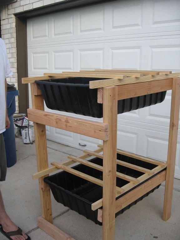 Chicken roosts with litter trays
