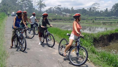 A biking tour in Bali! Would be fun for all the family and a good starting point in geography .