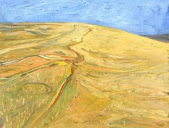 The Bird King: Yellow hill, Bundanon, oil 25 x 20cm
