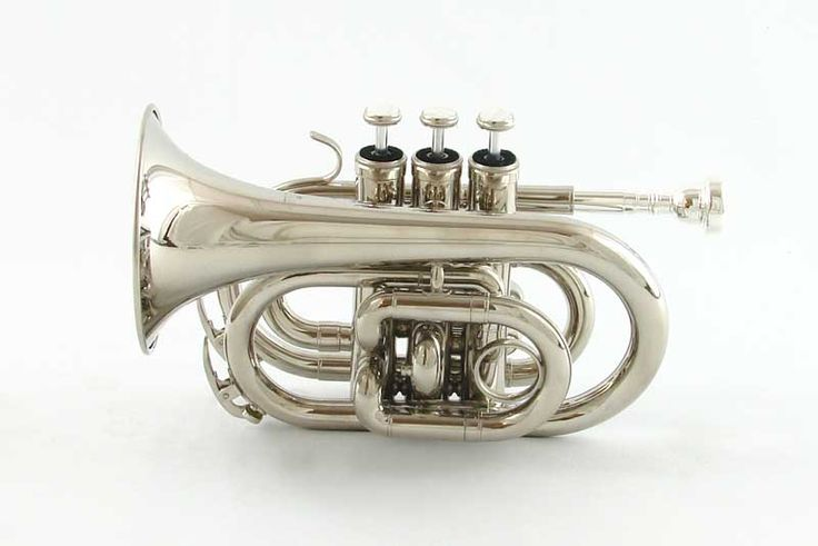 Pocket trumpets are so adorable. I want one.