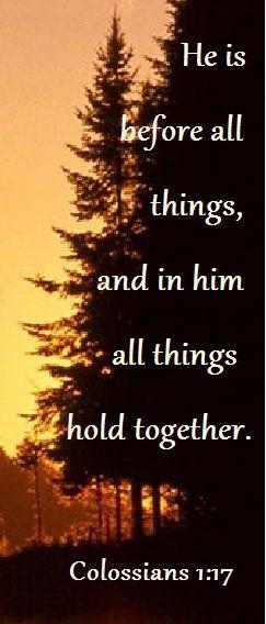 Colossians 1:17 #Bible #faith