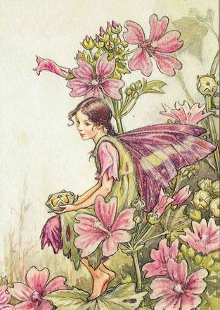 €1 Mary Barker Haaveellinen punaviolettisiipinen keiju (Flower Fairies)