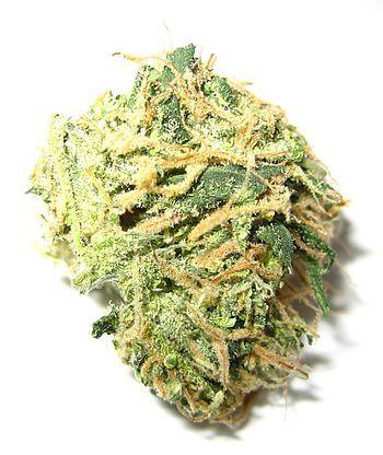 Marijuana small