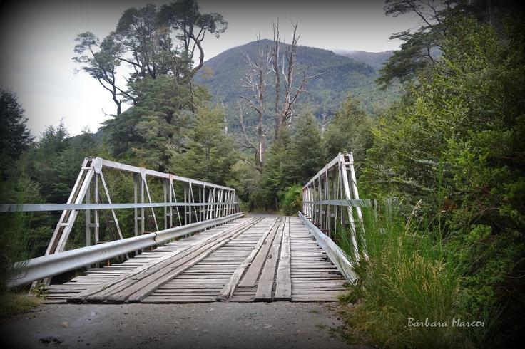 Puente Patagonico