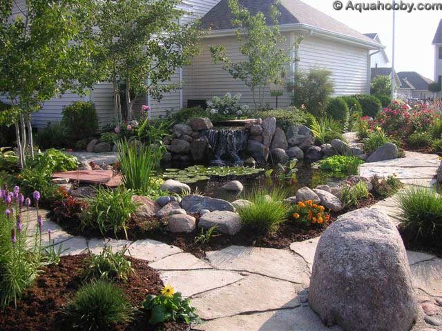 44 best images about low maintenance yard on pinterest for Backyard pond maintenance