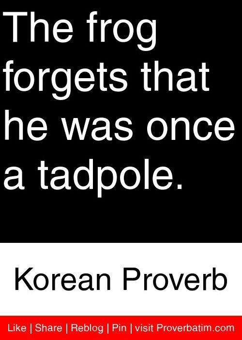 The frog forgets that he was once a tadpole. - Korean Proverb #proverbs #quotes