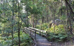 Springwood Conservation Park Springwood