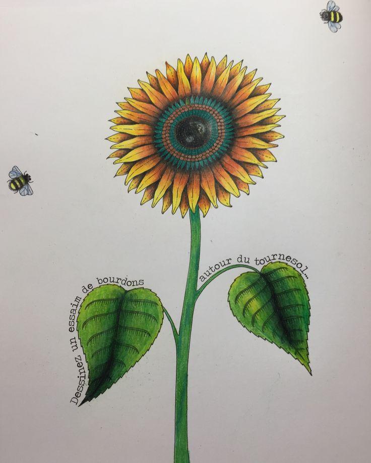 Encantador Colorante De Crayón Molde - Dibujos Para Colorear En ...