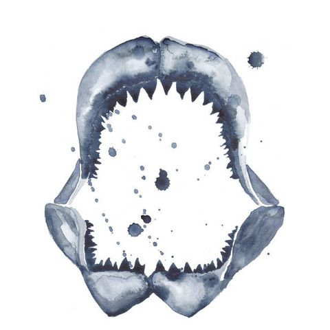Indigo Shark Watercolor Print