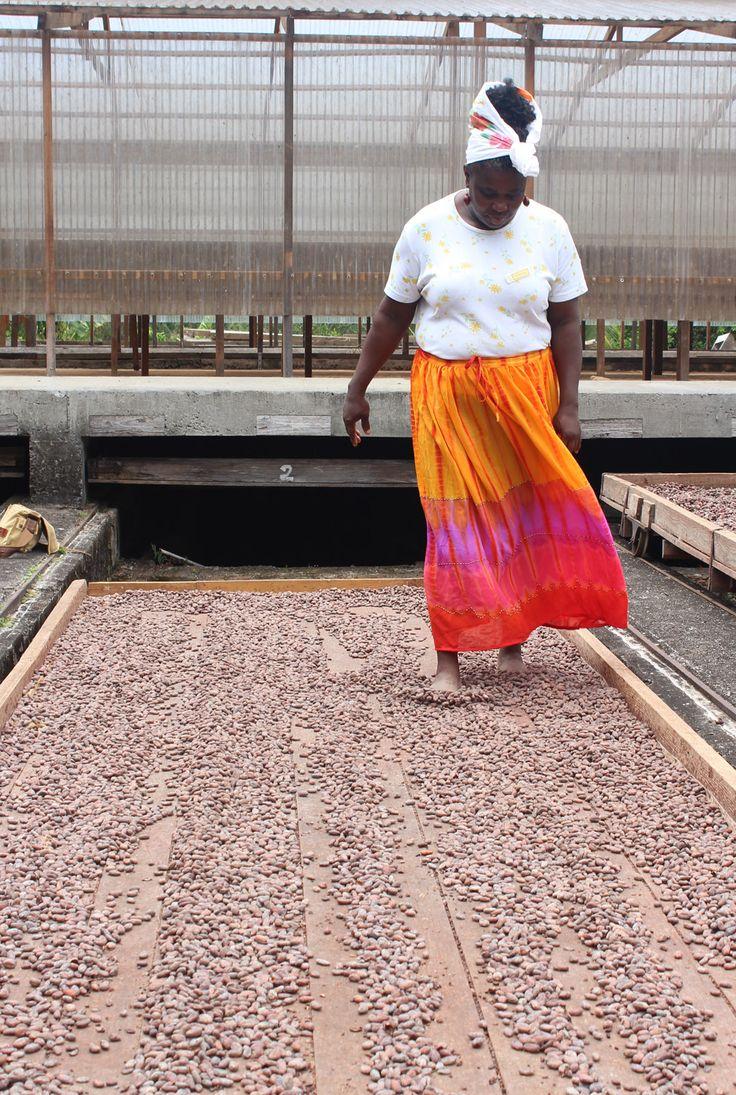cacaobonen bewerken