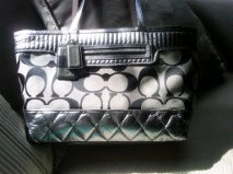 Love this bag it goes with everything too!  Coach <3